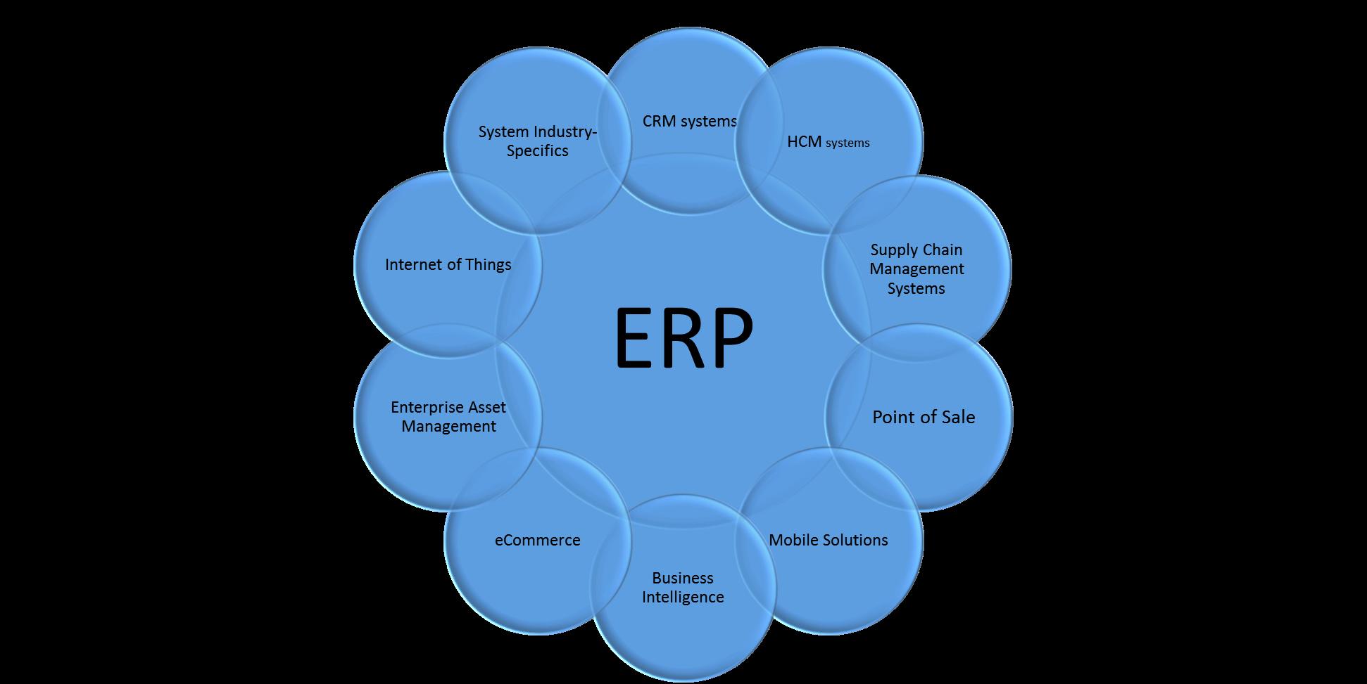 ERP Diagram Transparent
